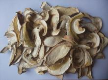 Dried boletus edulis