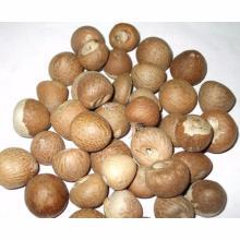 TOP QUALITY BETEL NUT / DRIED BETEL NUT