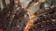 Red king  crab /frozen king  crab   legs