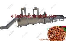 Automatic Green Peas Frying Line|Green Peas Fryer Machine