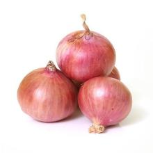 Red and Yellow Onion