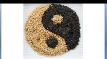 Organic Sesame Seeds - White or Black