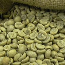 Arabica coffee beans screen 17 up,grade AA,
