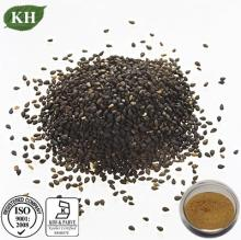 Top Quality Sesame Seed Extract Sesamin 60%~98% HPLC