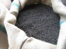 High.... Quality. Black $ .White. Pepper. 550gl/ .500gl/ Whole Black Pepper