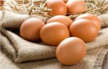 Farm Fresh Chicken Table Eggs,White Chicken Eggs, Brown Chicken Eggs