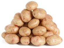 Holland Sweet Potato, -Fresh Potatoes for Sale / Fresh -Irish Potatoes