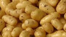 Best-- Quality fresh -irish potatoes-