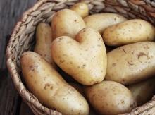 GAP Authenticated Fresh Shepody Irish Potatoes.....