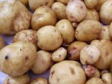 Fresh potatoes, sweet- potatoes, irish -potatoes, -chips, flour, starch, cake-