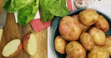 New Crop fresh -Irish potatoes -for sale at -very good- prices-