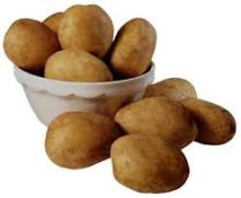 New Cultivation Organic Fresh Potatoes, Irish Potatoes/, Holland/ Potatoes SGS Certified/ HACCP, /