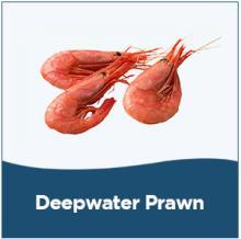 Tusk,herring,ling fish,Atlantic Halibut,Turbot, mackerel fish,deepwater prawn
