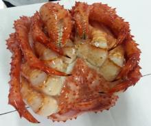 king crab,fresh lobster,pink salmon,crawfish,fresh scallop,ling fish,squid,shrimp,Atlantic Salm