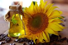 Ukrain refined sunflower oil/......
