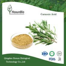 Manufactory supply high quality Rosmarinic Acid Carnosic Acid Rosemary extract