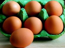 sell /buy Farm Fresh Brown Table Chicken Eggs