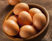 sell Fresh chicken eggs in bulk Broiler Hatching Eggs,Cobb 500/ Ross 308 Grade A
