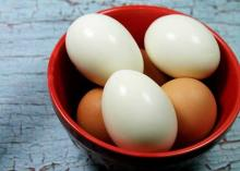 egg export india size big,,,,