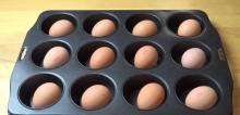 sell Fresh Farm Quality Eggs