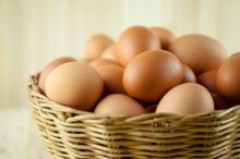 Fresh Table selling Eggs White / Fresh Table Eggs Brown 40g-50g-60g-65g-70g