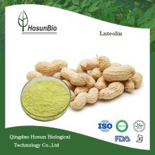 Natural Herbal Extract 98% Luteolin
