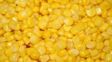 Canned Sweet Corn Best Price