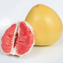 Red Pomelo