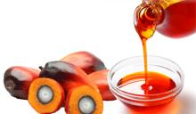 Quality Refined Palm Oil,Crude Palm Oil for