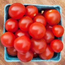 Korean Fresh Cherry Tomato