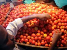 -fresh- tomato-