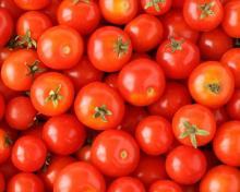 "good quality tomato """