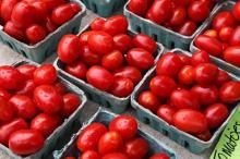 fresh tomato.....