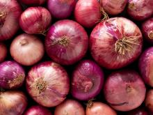 white onion/yellow onion/fresh red onion