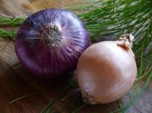 Red Onion With Quality for Malaysia