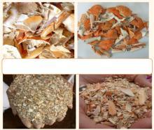 dried crab/ shrimp   shell