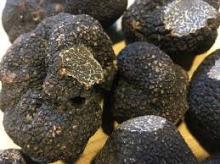 Fresh Black Winter Truffles