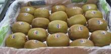Fresh Green Kiwi Fruit