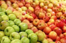 Fresh Apples ( Fuji, Gala, Red, Golden)