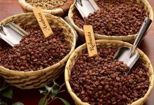 Coffee   Beans (Arabica or  Robusta )
