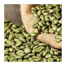 Top Quality Unroasted Arabica/Robusta Green Coffee Beans