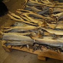 Tusk Dry Stock Fish Cod / dried salted cod fish