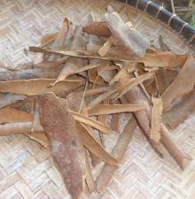 cinnamon split