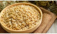Oats Seeds / Grains /Raw / Whole/for sell/kernels/ flakes