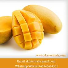 Frozen Mango Fruit Thailand Pulp/Chunk/Dice/ Slice