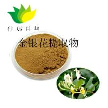 Ginseng extract power