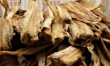 Quality Grade A Dried StockFish / Frozen Stock Fish for sale//