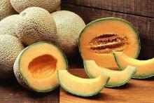 Fresh Musk Melon Fruit