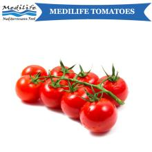 Fresh Tomatoes.2018 Harvest.Sweet Mediterranean Tomatoes.