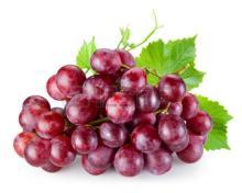 Best Sell Fresh Sweet Honey Red Grape